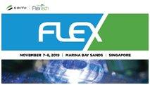 flex_singapore_2019